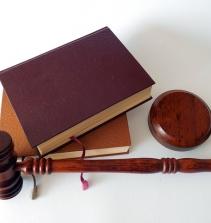 Curso de Direito Administrativo: Princípios, Organização, Atos, Poderes, Licitações e outros com certificado