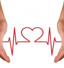 Curso de Fisiologia Cardiorrespiratória com certificado