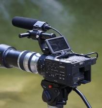 Curso de O ensaio e as travessias do cinema documentário com certificado